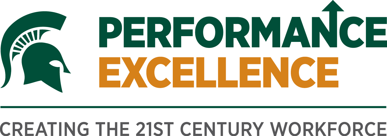 Performance Excellence Process