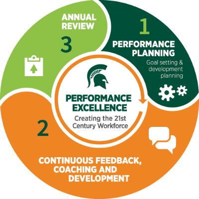 Performance Excellence Process Graphic
