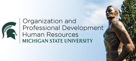 Organization & Professional Development
