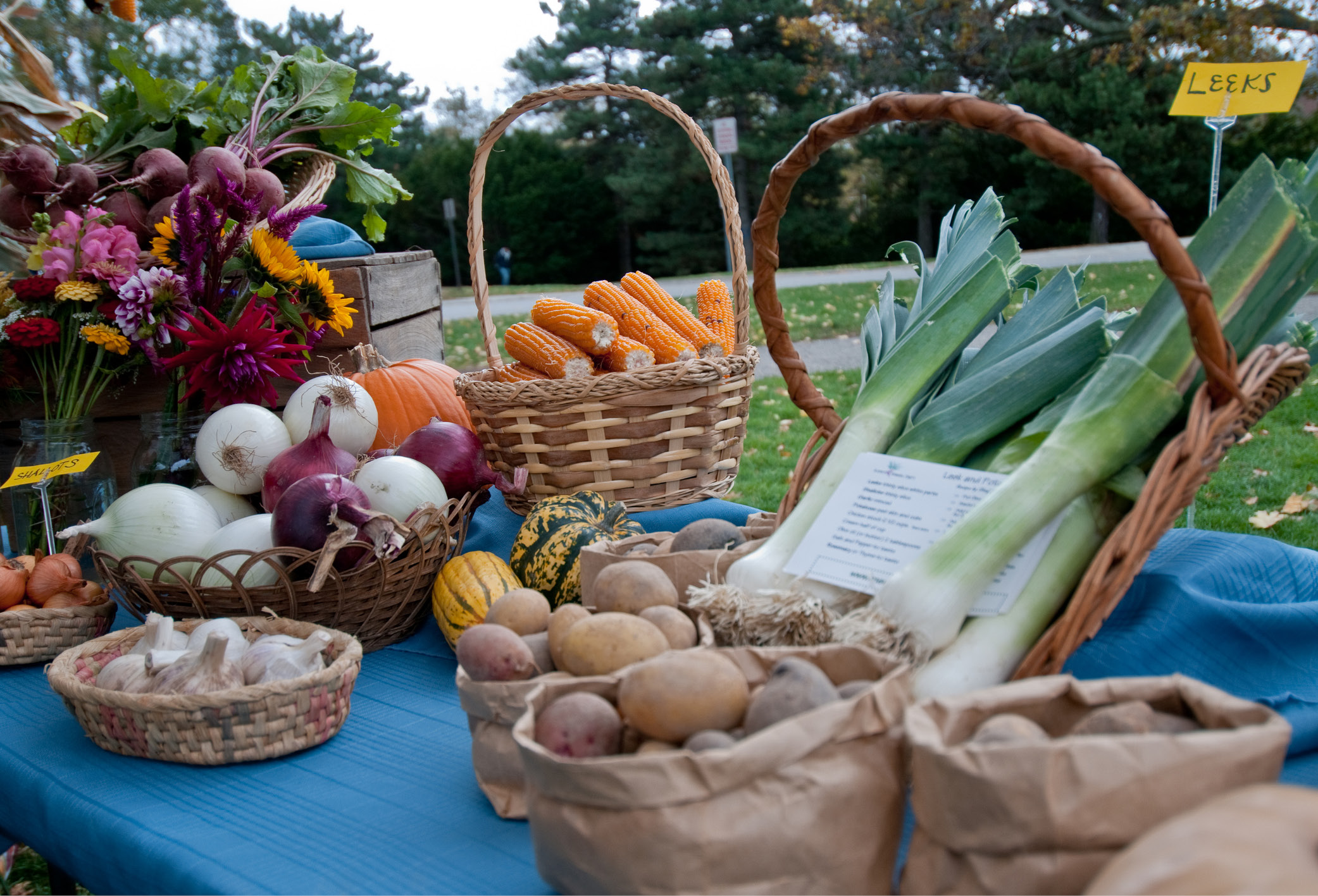 photo of fruits and vegetables at the student organic farmers market